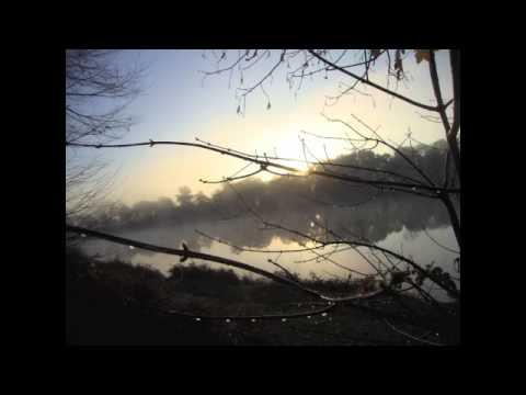 Joseph Haydn - Highland Air : The Lone Vale - Werner Güra