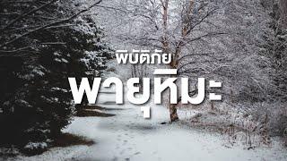 สารคดี สำรวจโลก ตอน มหาภัยพิบัติ ตอนพายุหิมะ