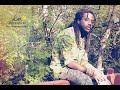 Download Keep The Faya Burnin' - Xavier Gong (Generation Rasta: Revolution) MP3 song and Music Video