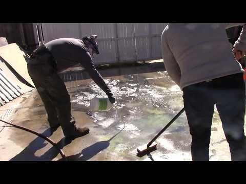 Cleaning a tough stain on concrete using Muriatic acid