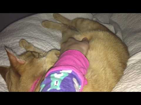 Cuddling with my Orange Tabby Cat Mya :)