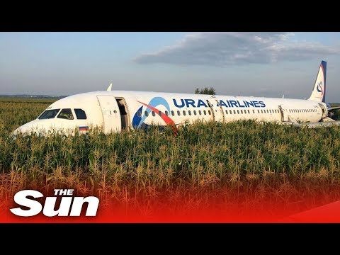 Big Rig - RAW VIDEO: Russian Plane Crashes Into Field After Heavy Bird Strikes