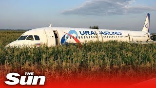in-flight-video-of-bird-strike-emergency-landing-ural-a321