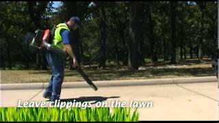 Yard Waste Management