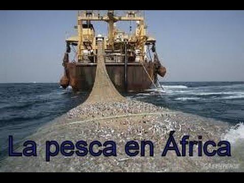 LA PESCA EN ÁFRICA