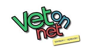 Rabbits - Episode 1 - Rabbits general information - Vet on Net