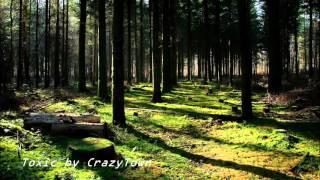 CrazyTown (Toxic)