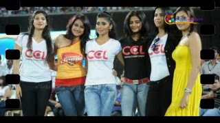 Star Cricket - CCL Team Updates!...