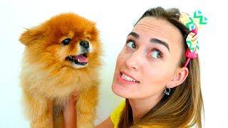Vlad và mẹ chọn vật nuôi mới