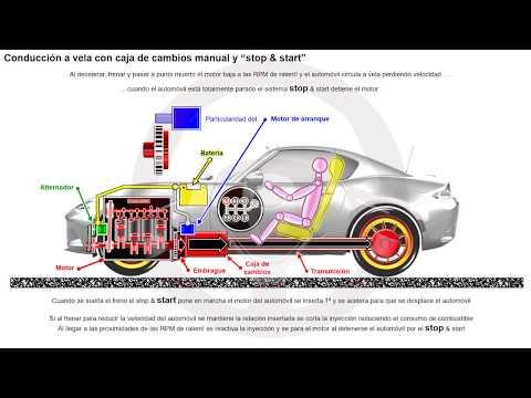 Conducción a vela con caja de cambios automática o automatizada (2/5)