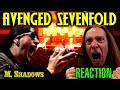 Vocal Coach Reacts To Avenged Sevenfold  Critical Acclaim    Ken Tamplin