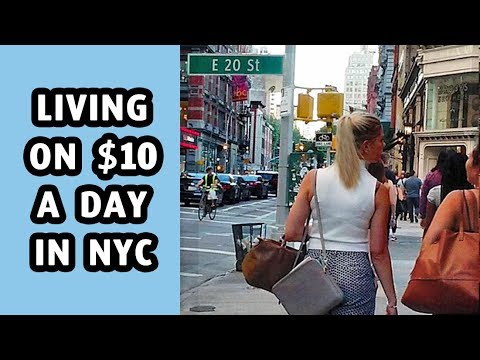 Living On $10 A Day In New York - Image Copyright YtImg.Com