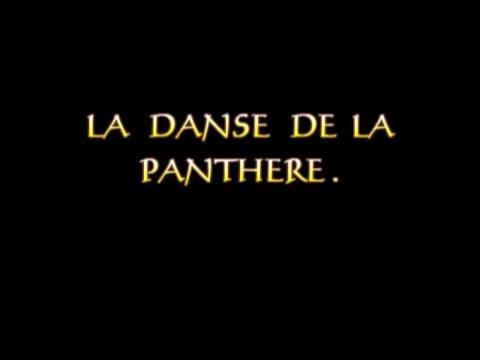 LA DANSE DE LA PANTHERE - Documentaire (Côte d'Ivoire)