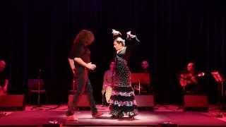 Manuel Reina \u0026 Işıl Reina - Potito - mi guitarra