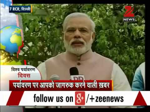 PM Modi plants Kadam tree on World Environment Day
