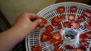 Как сушить помидоры в сушилке Белома.