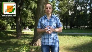Интервью с участником тренингов в «Квадратном апельсине»