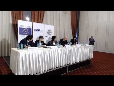 2014 former Yugoslav Republic of Macedonia (parliamentary) - post-election press conference