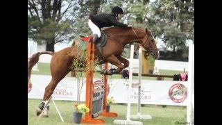 Fotos De Equitacion