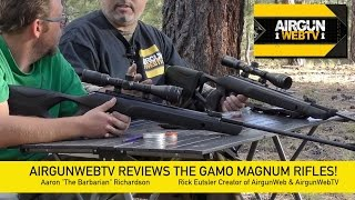 gamo Magnum .177 and .22 FULL REVIEW  AirgunWebTV Special Feature!