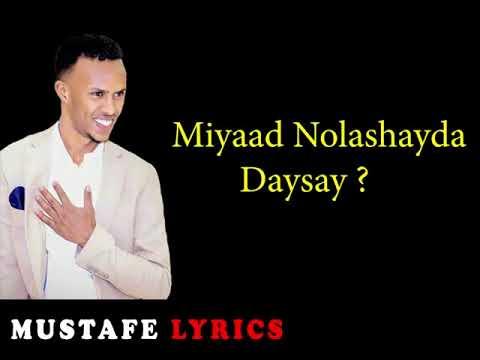 Download Miyaad Noloshayda daysay by Nimcaan Hilaac 2019