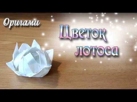 Цветок Лотоса из оригами Flower Origami Lotus