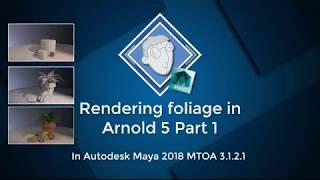 01 Arnold5 folege Part 1
