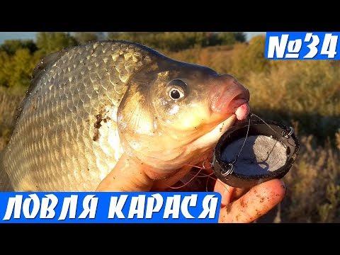 Крупные караси на Пробку. Рыбалка на карася Осенью.