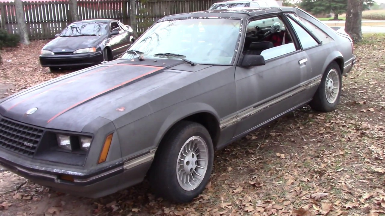 1981 mustang first drive