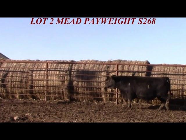 Mead Farms Lot 2