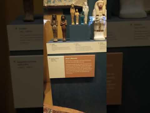 Ancient Egypt Display
