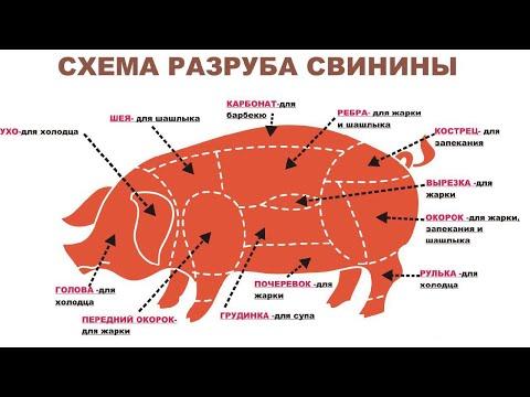 🔪🐷 Разруб свинины (Выгодный). meat cutting, meat, butcher, 肉,切肉,屠夫,猪肉,牛肉,羊肉,鸡,係食物呀!