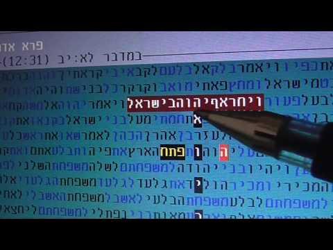 Wild  Man - Hamas - P.l.O -  Iran  in bible  code   Glazerson