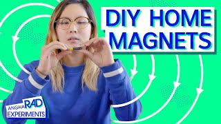 Testing Magnetic Fields At Home | Science Experiments