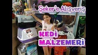 KEDİM İÇİN ALIŞVERİŞ YAPTIK:)) kedi malzemesi fiyatları !!