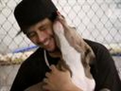 Carlito Gets Adopted | Pit Bulls and Parolees