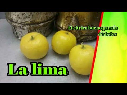 La Lima: El Citrico Bueno Para La Diabetes.