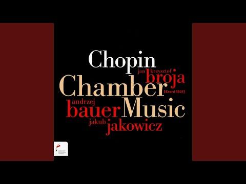 Sonata for Piano and Cello in G Minor, Op. 65: I.Allegro moderato