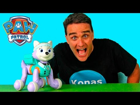 Paw Patrol Zoomer Everest  || Toy Reviews || Konas2002
