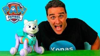 Paw Patrol Zoomer Everest  || Toy Reviews || Konas2002