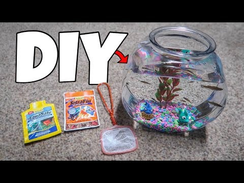1 Gallon STARTER KIT AQUARIUM!!!