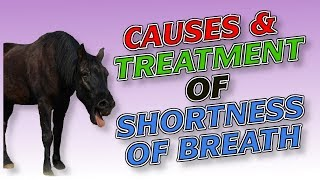 Causes and Treatment of Shortness of Breath (Dyspnea) or Breathlessness