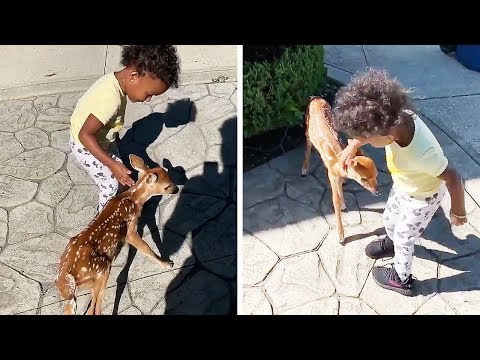 The Mo & Sally Show - Little Girl Meets A Baby Deer and They Instantly Become Best Friends