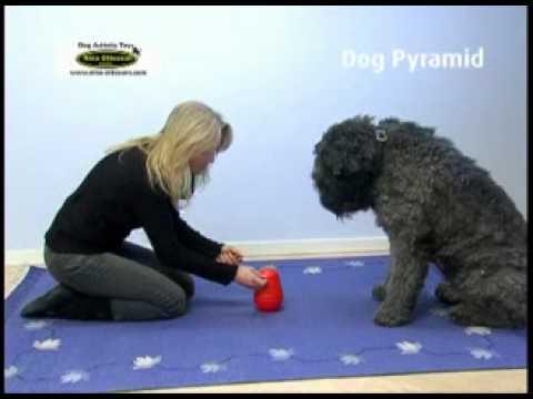 Nina Ottosson's Dog Pyramid