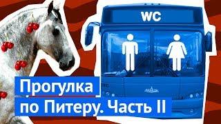 Петербург: туалет на Дворцовой, украденная ступенька и хорошее жилье