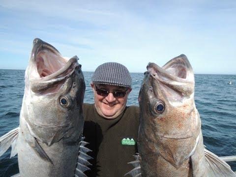 Kaikoura Fishing Charters, Fishing Trips With