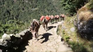 Nepal 2016 - KTM - Namche Bazar - Tangboche