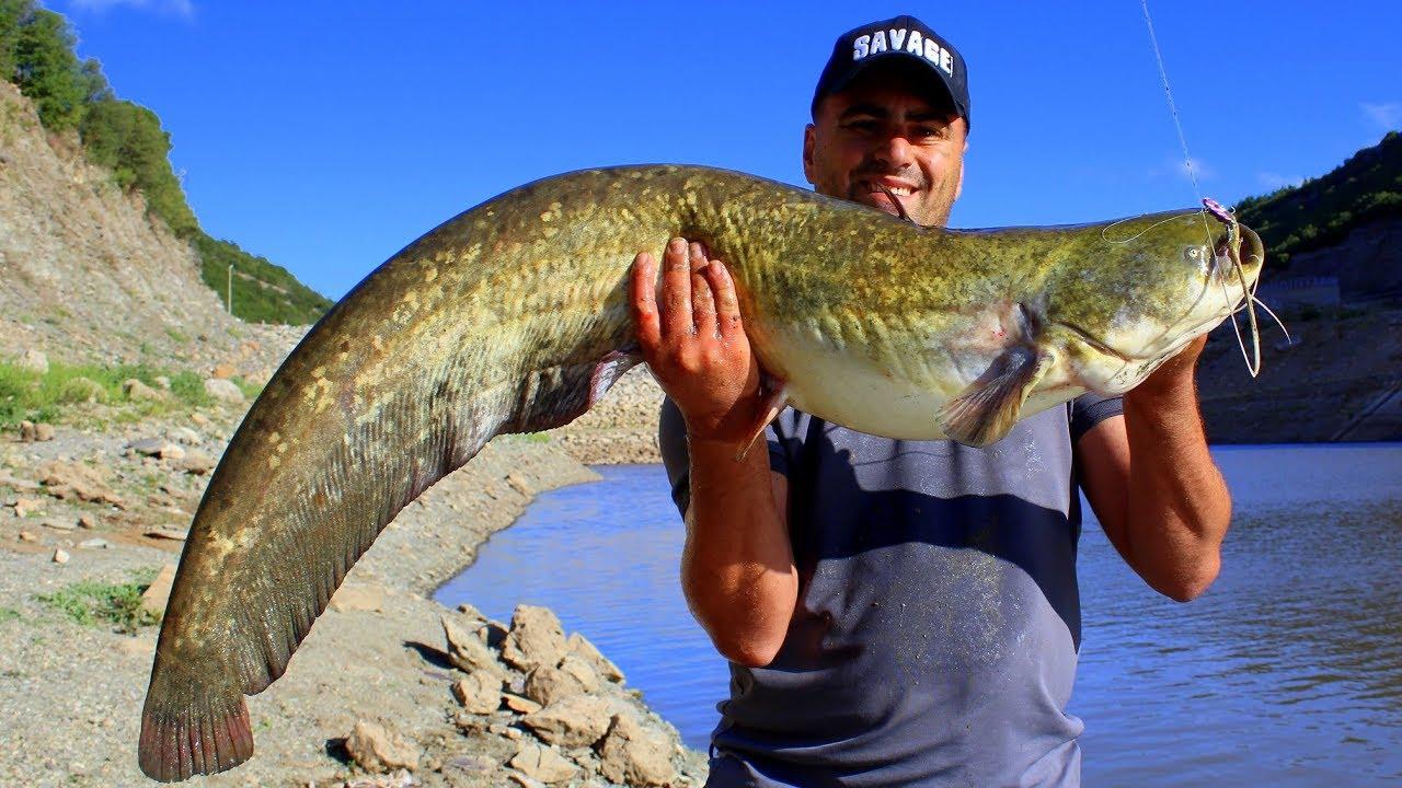 At-Çek Yöntemi İle Dev Yayın Balığı Avı / Giant Catfish Spinning