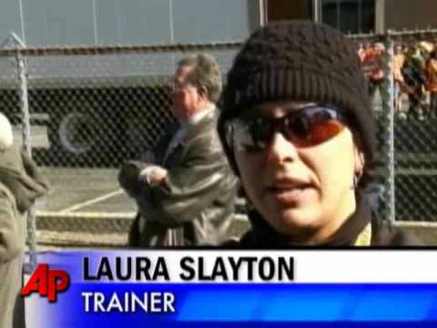 3 Die Running the Detroit Marathon