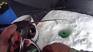 How to Kokanee Jig - Ice Fishing Tips